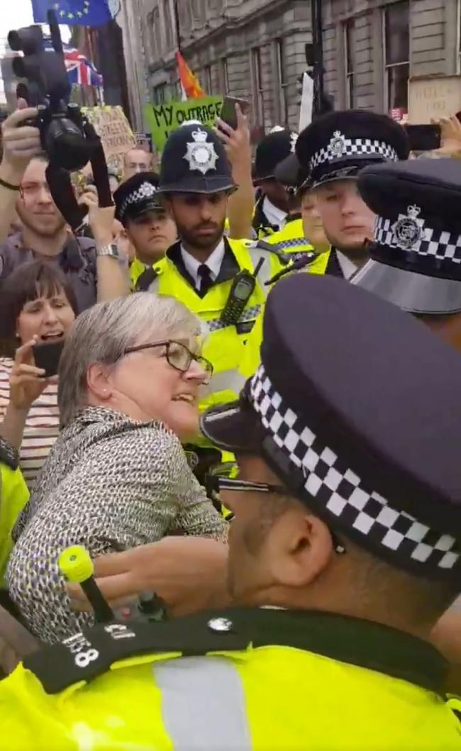 Caroline Russell was arrested at a Brexit protest on Saturday (Image: Ben P).