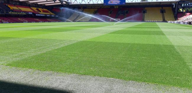 The sprinklers at work on Watford's new playing surface on Friday. Photo: Anthony Matthews