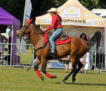 The Kent Country Show
