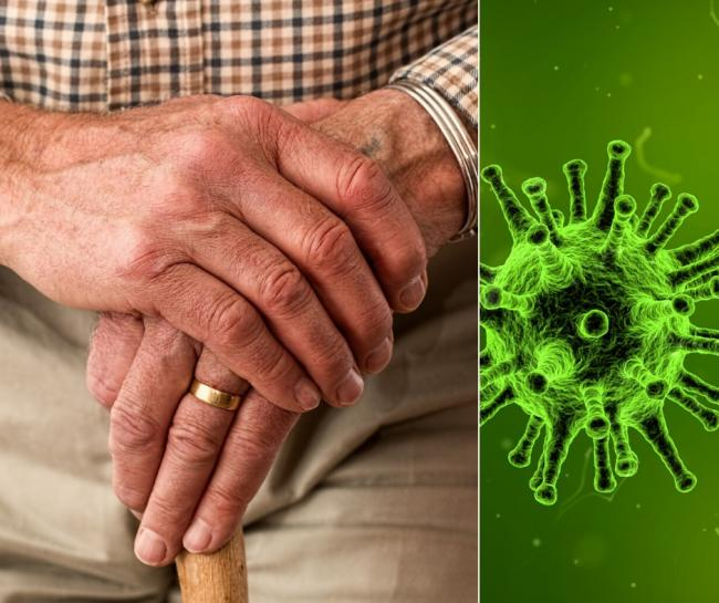 The virus has affected most council services, including those relating to care (Photo: Pixabay/Pexels)