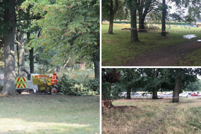 Cassiobury Park has reopened with limited access (photo Watford Council)