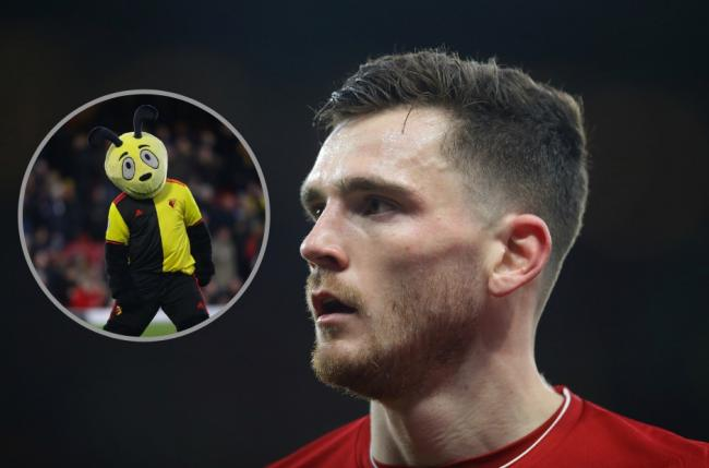 Andy Robertson was not impressed by Harry the Hornet's antics. Credit: Action Images