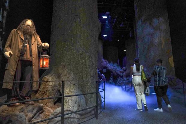 Harrow Times: People are looking around the sets of the Warner Bros.  Studio Tour London Ð The Making of Harry Potter attraction in Leavesden.  Credit: PA