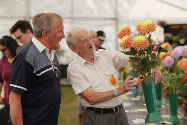 Tenth annual Harrow in Leaf show starts today