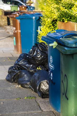 Frustration at disruption to bin collections