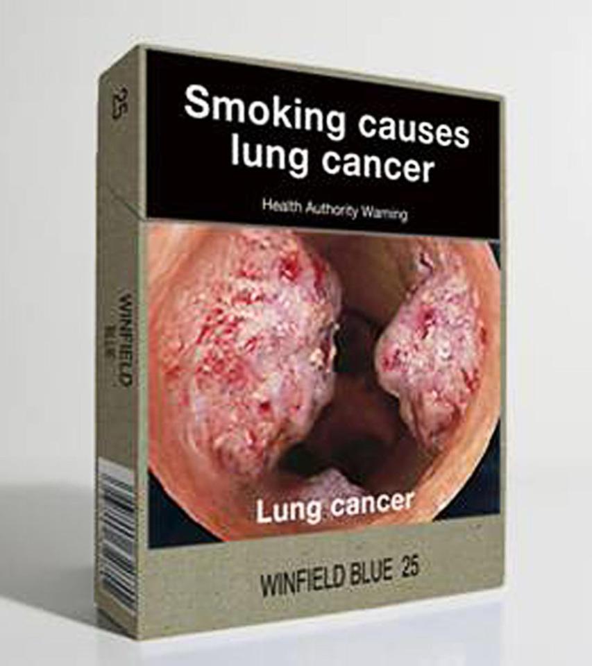 Tobacco flavored electronic cigarette