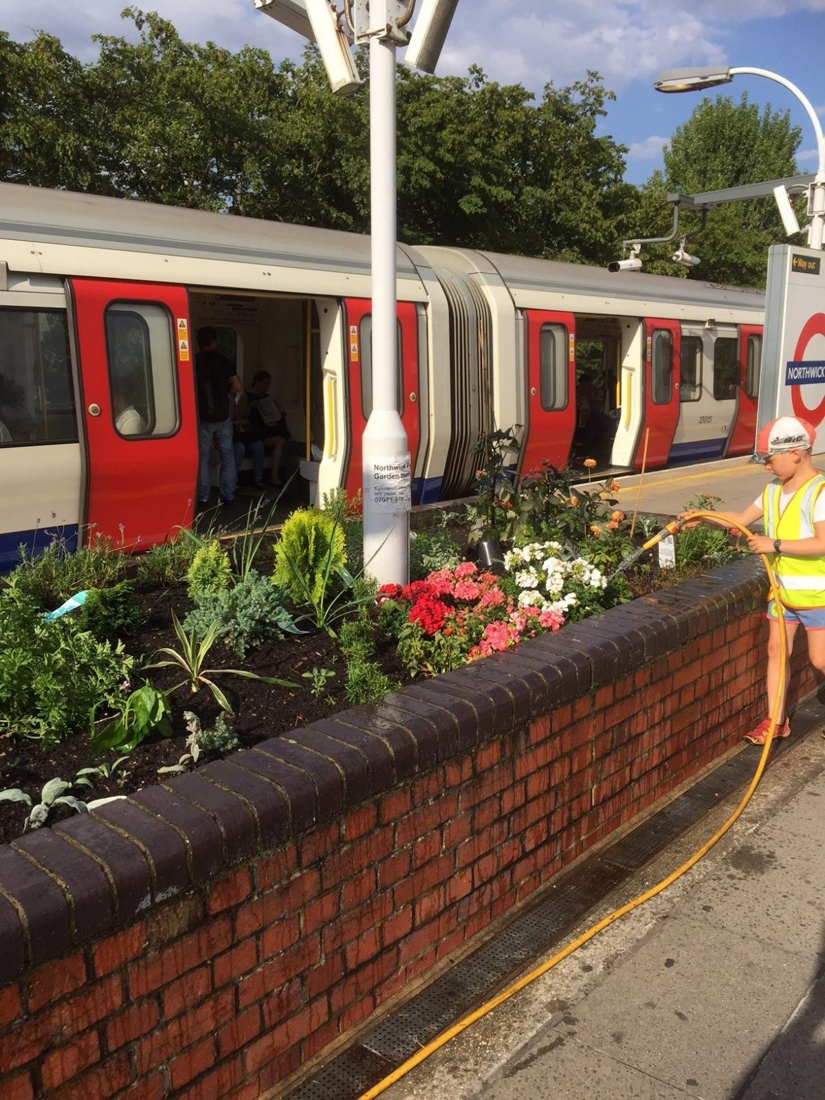 Commuters take snaps of seven-year-old boy\'s finished garden at ...