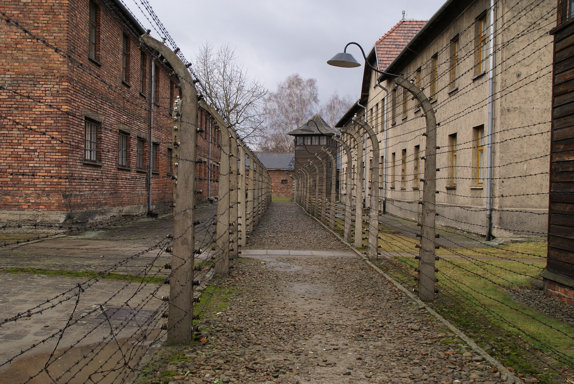 The programme will be based on the successful Lessons from Auschwitz initiative