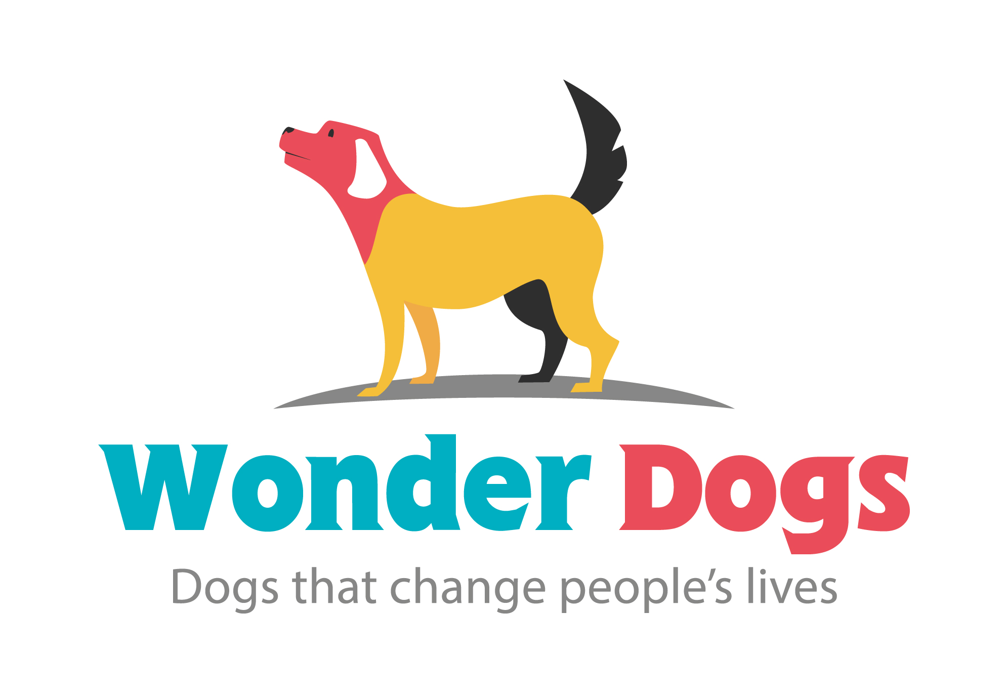 Wonder Dogs: Dogs That Change People's Lives