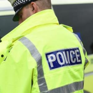 Woman suffers head injuries after alleged assault