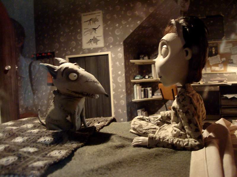 Half Term Film: Frankenweenie